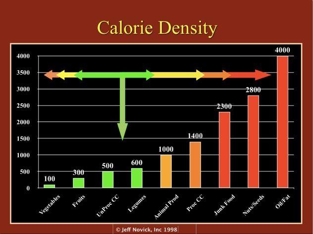 A Common Sense Approach To Sound Nutrition (Calorie Density - food calorie chart