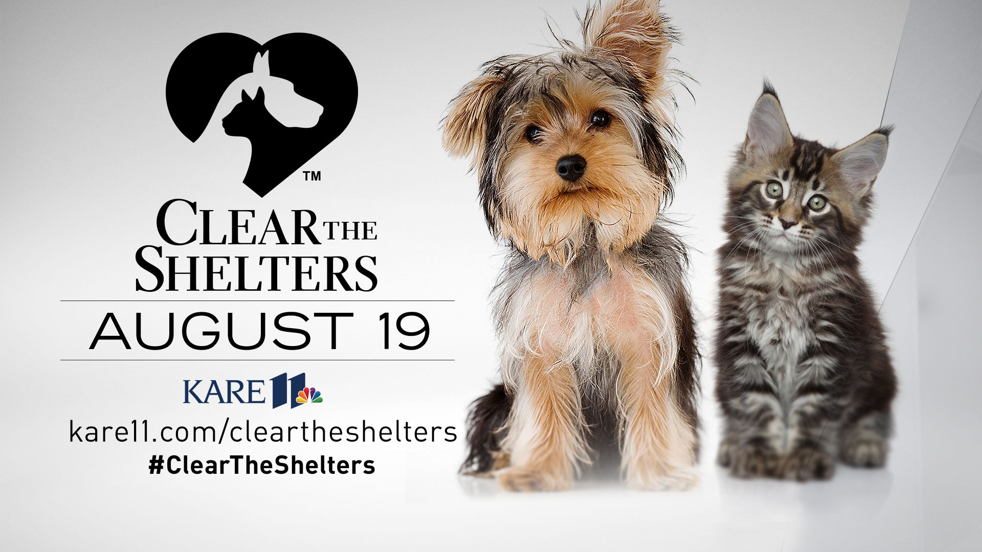 Help 'Clear the Shelters' on August 19 Animal shelter