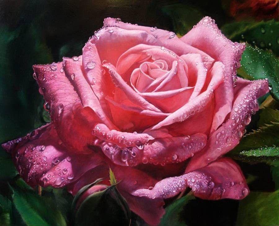 Женщины, гифы прекрасные розы