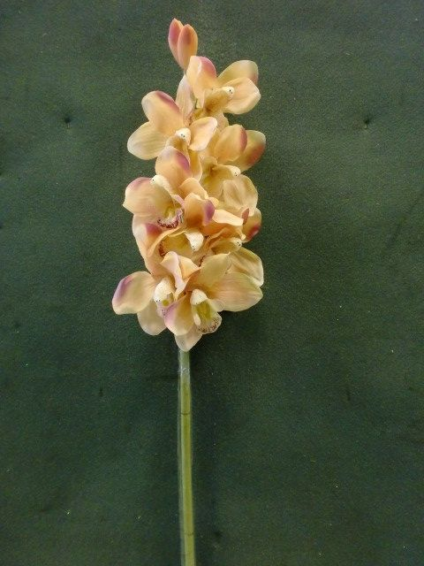 Tanday Champagne Cymbidium Orchid Silk Spray 88010. $19.95, shipping $3.95 to US, $6.95 to Japan.
