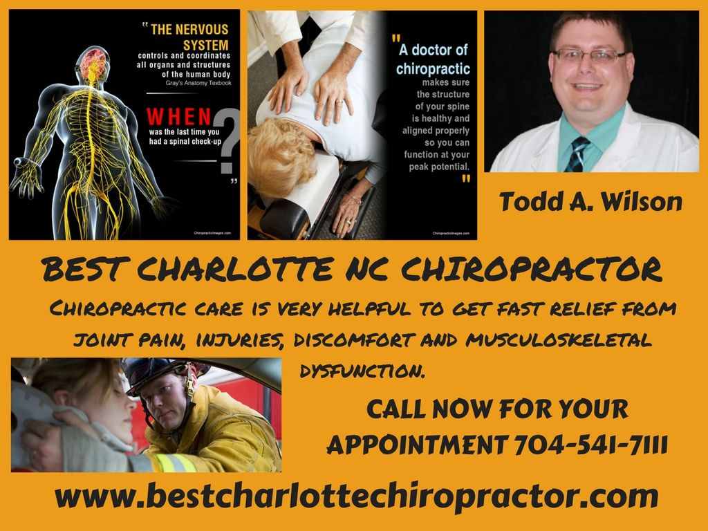 looking for best chiropractic care tebby chiropractic and sports