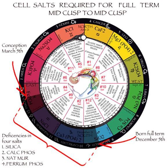 the zodiac and the salts of salvation two parts