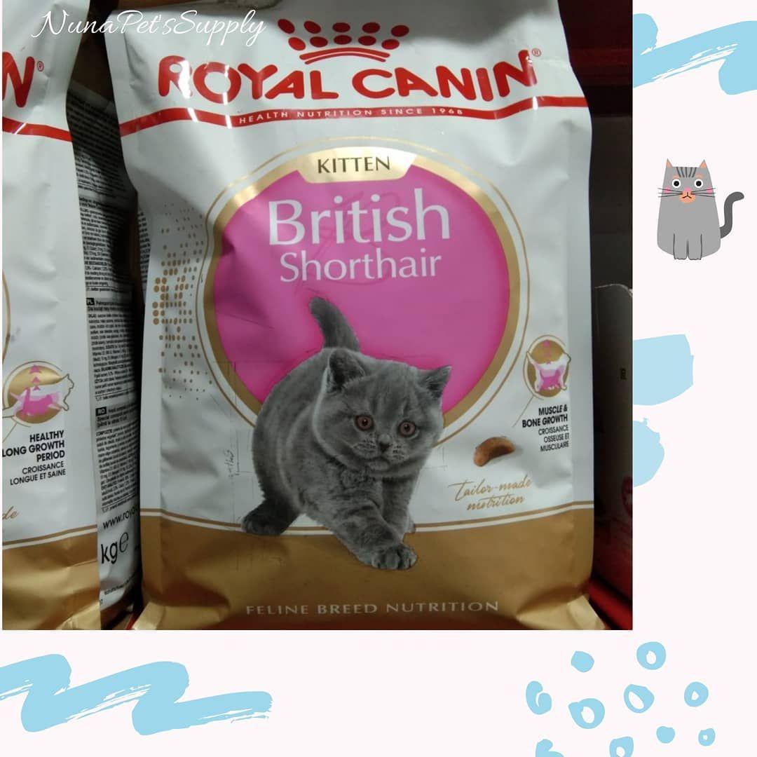 Makanan Kucing Royal Canin For British Shorthair Kitten Makanan Untuk Kucing Ras British Shorthair K British Shorthair Kittens British Shorthair Cat Tags