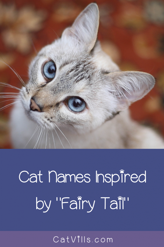 50 Adorable Fairy Tail Cat Names Pun Intended Cat Names Fairy Tail Cat Cute Cat Names