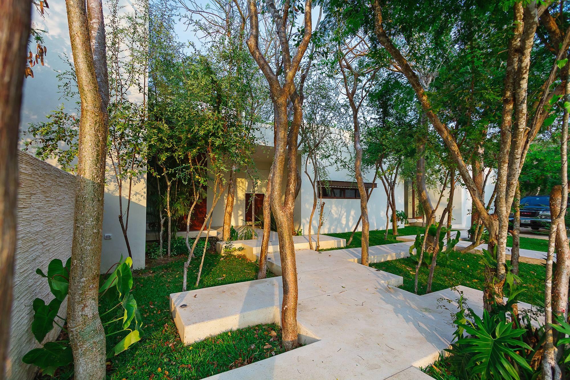 forest yard | yard | pinterest | wald und höfe, Gartengerate ideen