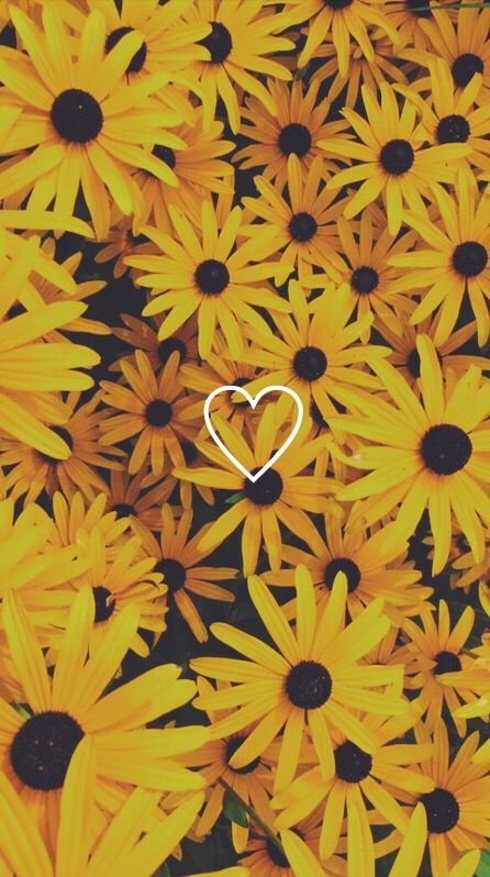 Wallpaper Flowers Yellow Iphonewallpaper Tumblr Floral Summer Pretty Phone Backgrounds Phone Wallpapers Sunflower Wallpaper Aesthetic Iphone Wallpaper