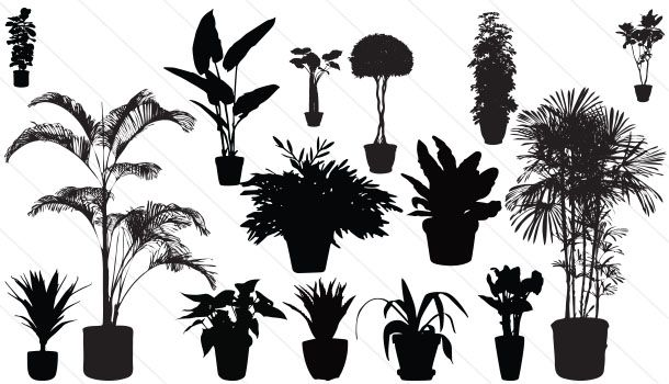 Potted Plants Silhouette Vector Download Plant Vector Plant Vector Silhouette Vector Nature Vector