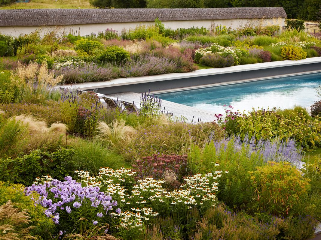 Soft Plantings In Formal Hardscape Wiltshire Garden