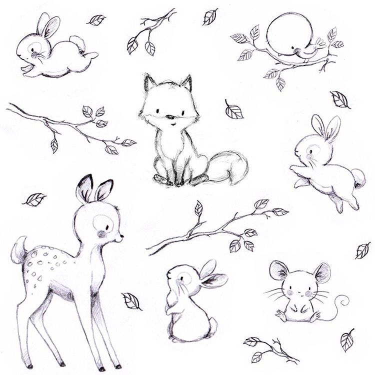 Line Drawings Of Cute Animals : Pin by jacomien greyling on woodlands animals pinterest