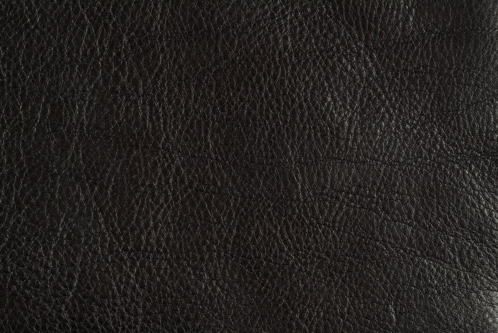 leather background search design