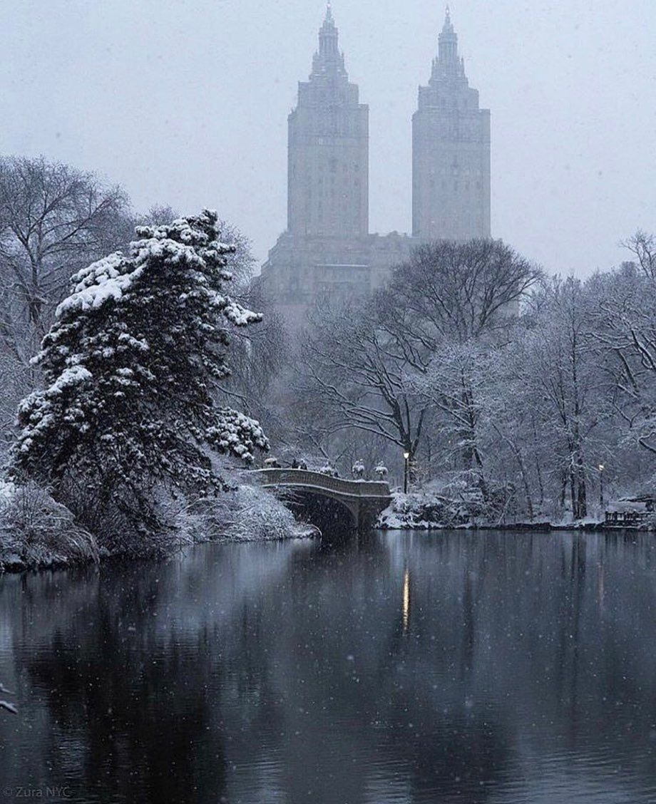 "NYC on Instagram: ""who is visiting new york this winter?? • • • #newyork #newyorkcity #nyc #bigapple #christmas #newyorkchristmas #christmasinnewyork…"""