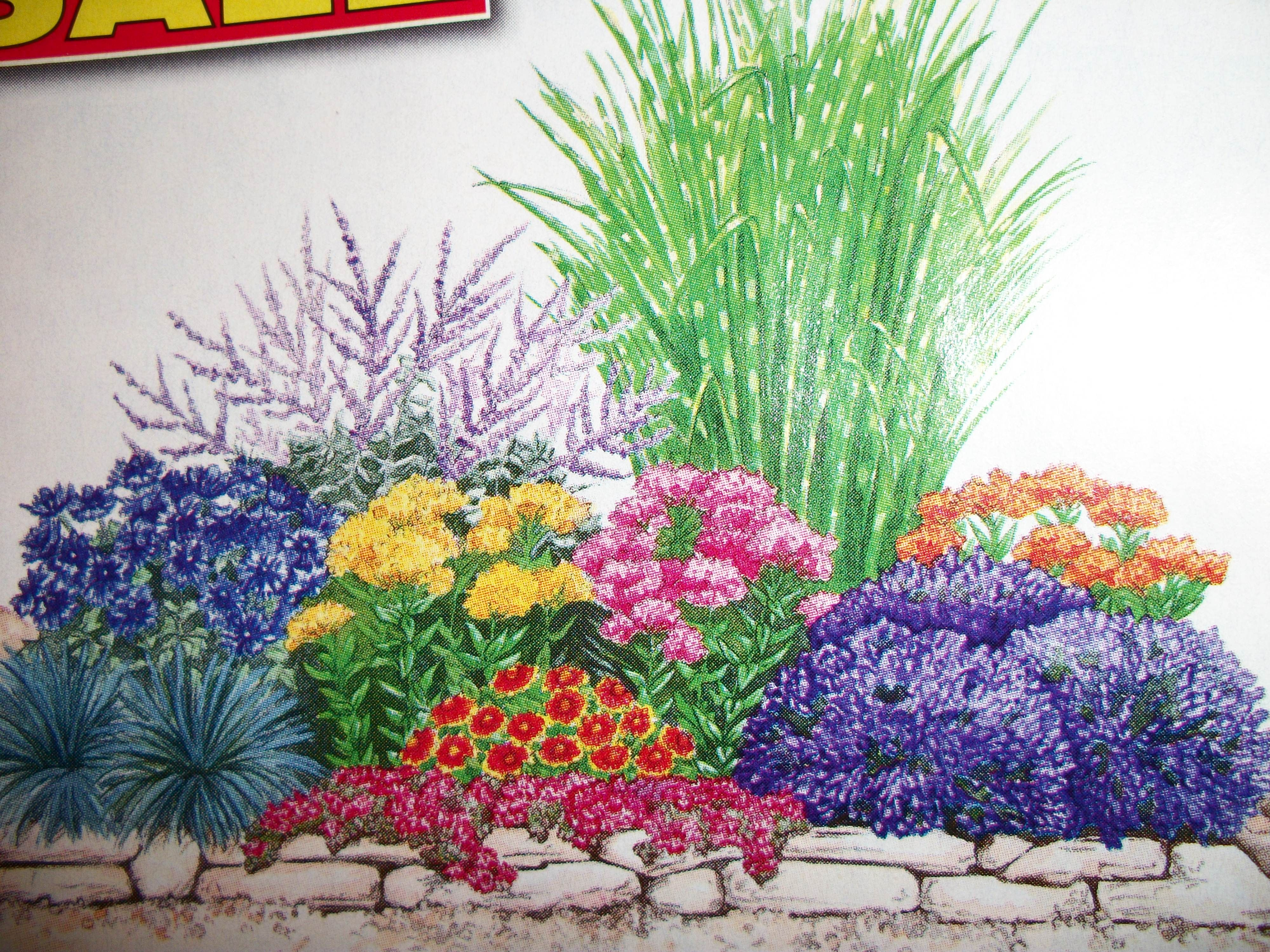 Purchase Pre Planned Garden With Images Perennial Garden Plans