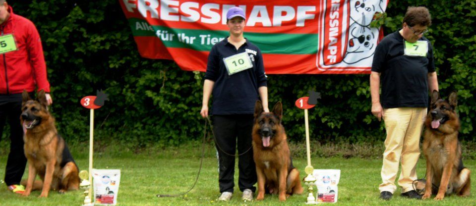 Nino von Tronje won first place in German Show 2012