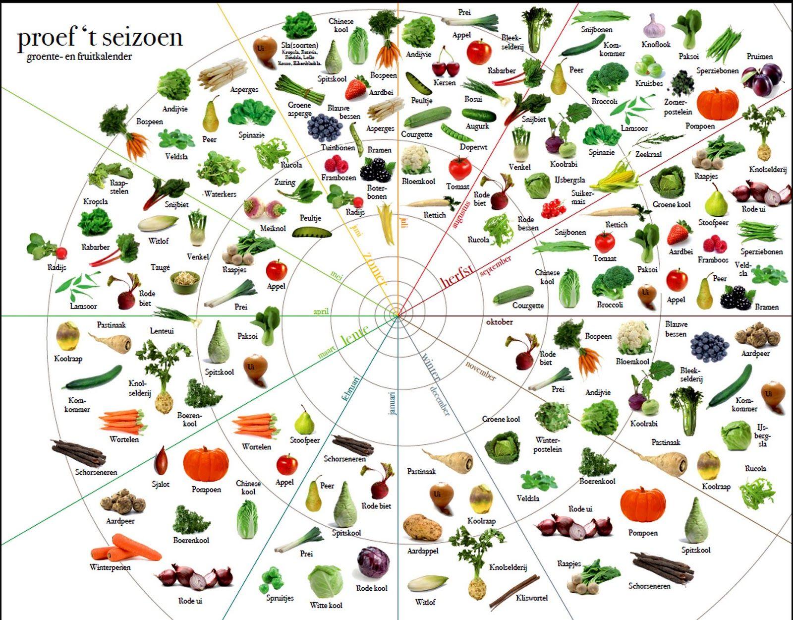 Fonkelnieuw Seizoens groente en fruit kalender   Groente, Groenten, Seizoenen JC-04