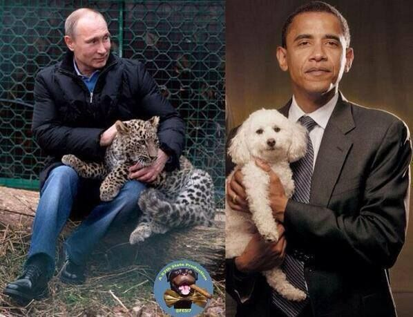 Presidential pets.