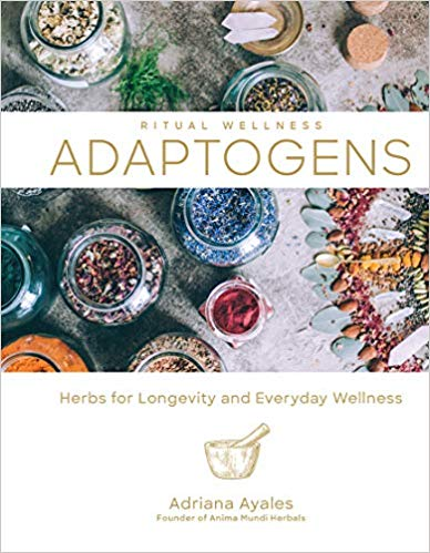 Adaptogens Herbs For Longevity And Everyday Wellness Ritual