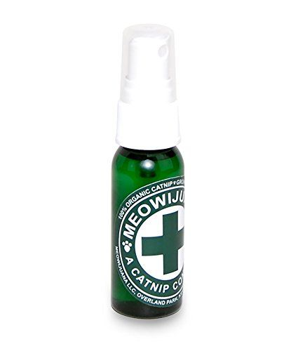 Meowijuana Catnip Spray Click on the image for