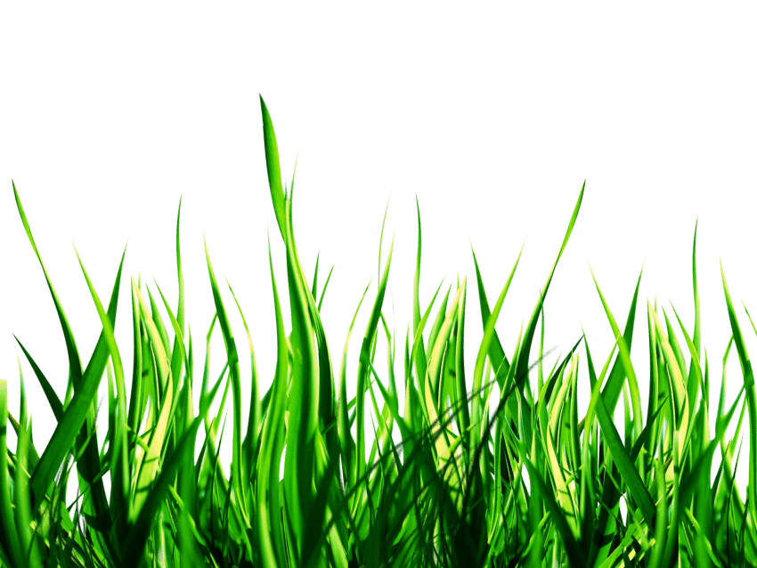 Download Nature Png Images Background Png Free Png Images Background Images Free Download Png Images Background Images Hd