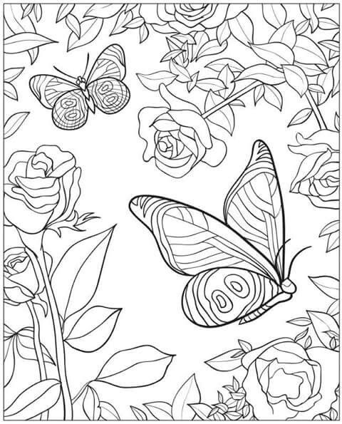 Rose Butterflies Butterfly Coloring Page Designs Coloring Books Coloring Pictures