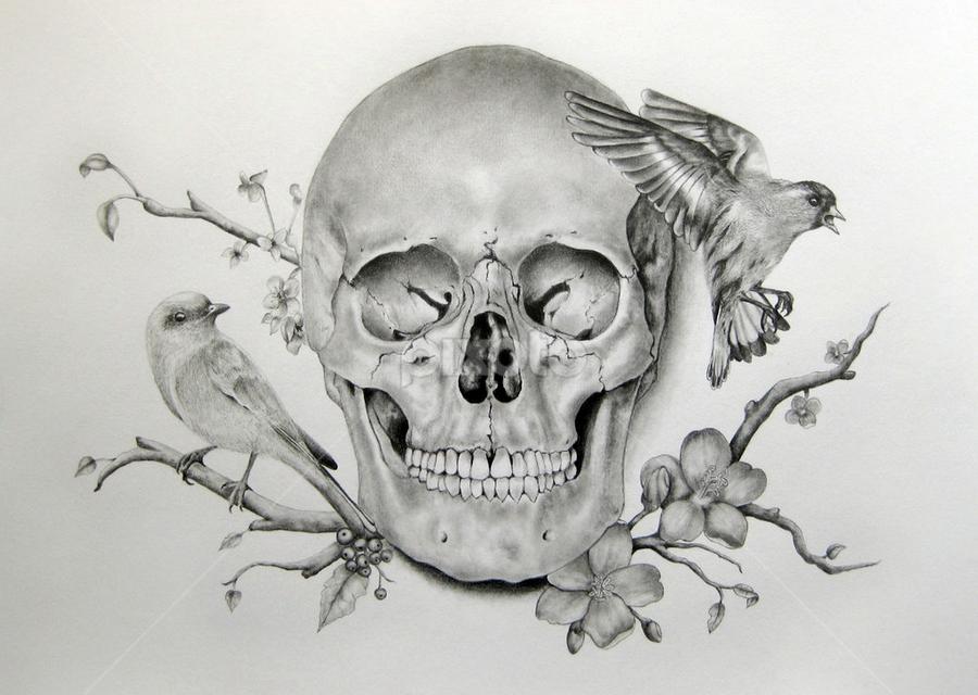 турецкий картинки черепов и скелетов карандашом случае