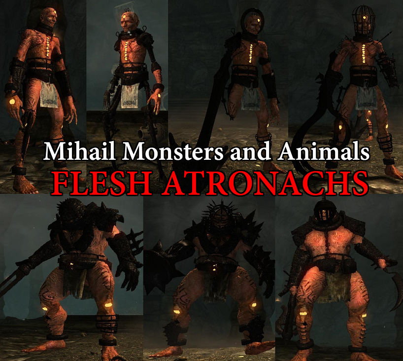 Flesh Atronachs- Mihail Monsters and Animals (SSE) (mihail