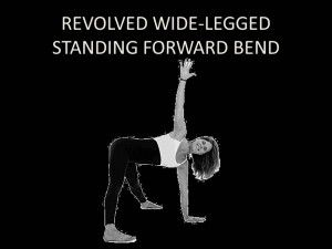 Revolved Wide-Legged Standing Forward Bend  Sanskrit Name: Prasarita Padottanasana