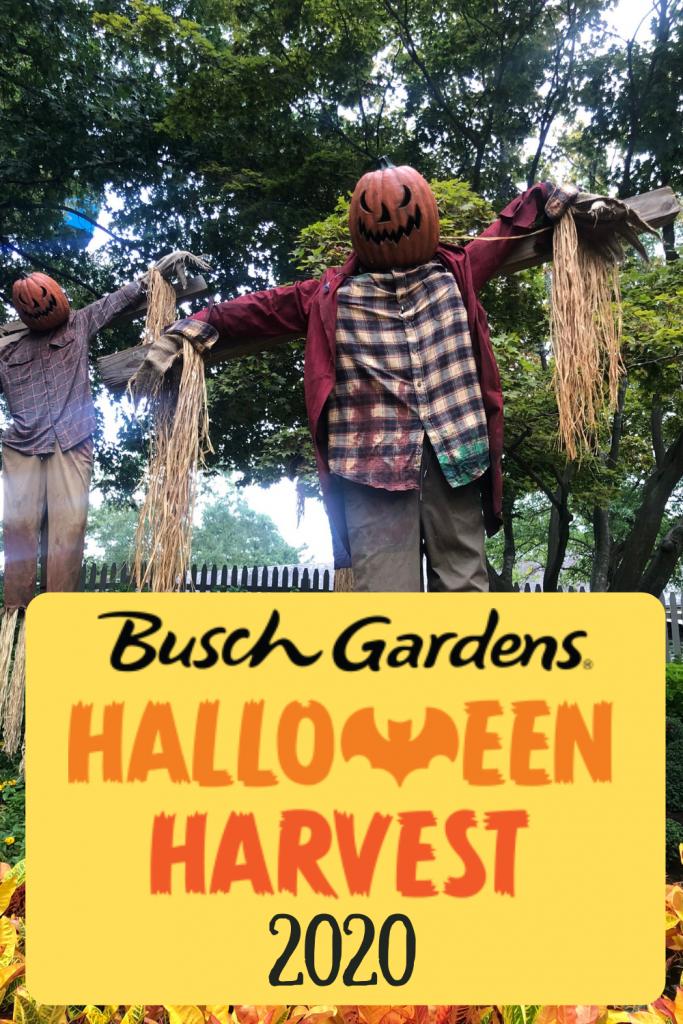 706f417814796574fa510b9da356814a - Busch Gardens Williamsburg Food And Wine Festival 2020