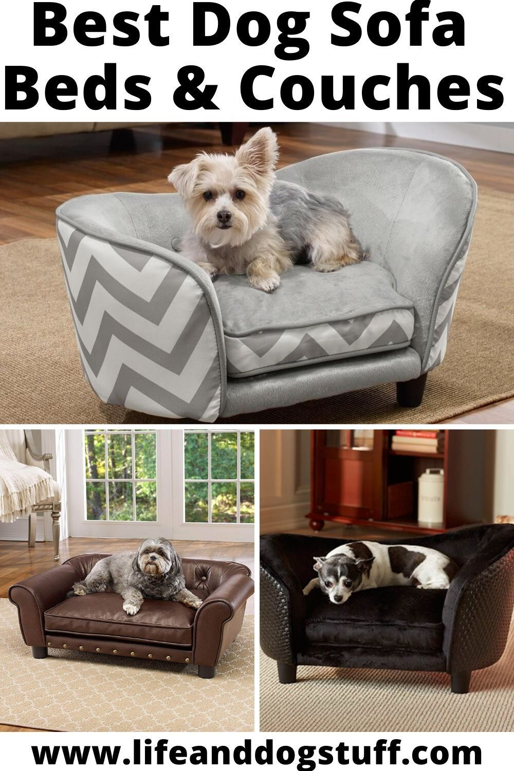 8 Best Dog Sofa Beds And Couches With Images Dog Sofa Dog