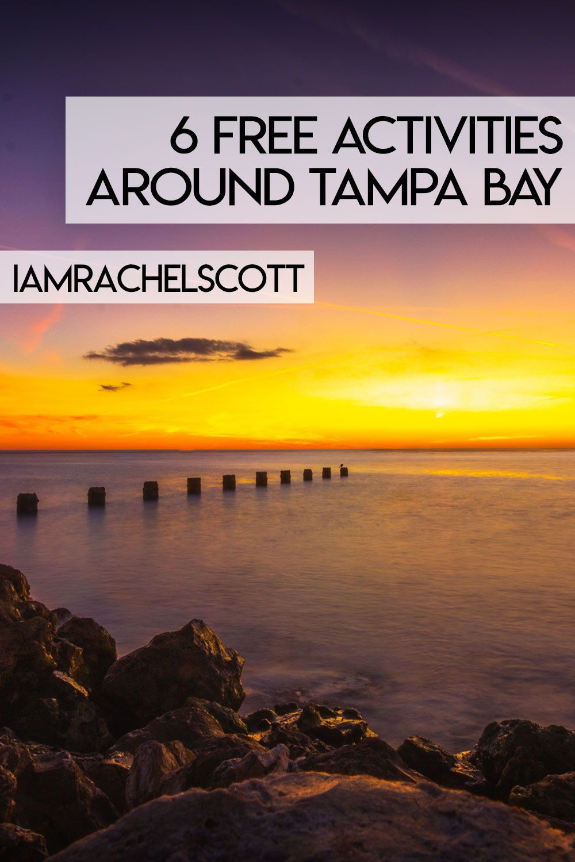 Fun Free Things To Do Around Tampa in 2020 Tampa bay