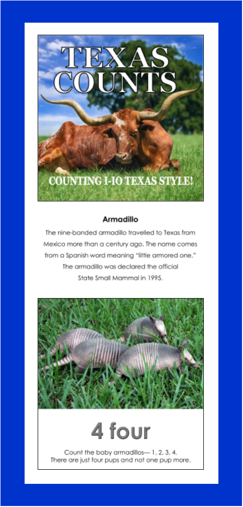Read Fun Facts About Texas Symbols And Places With This Rhyming