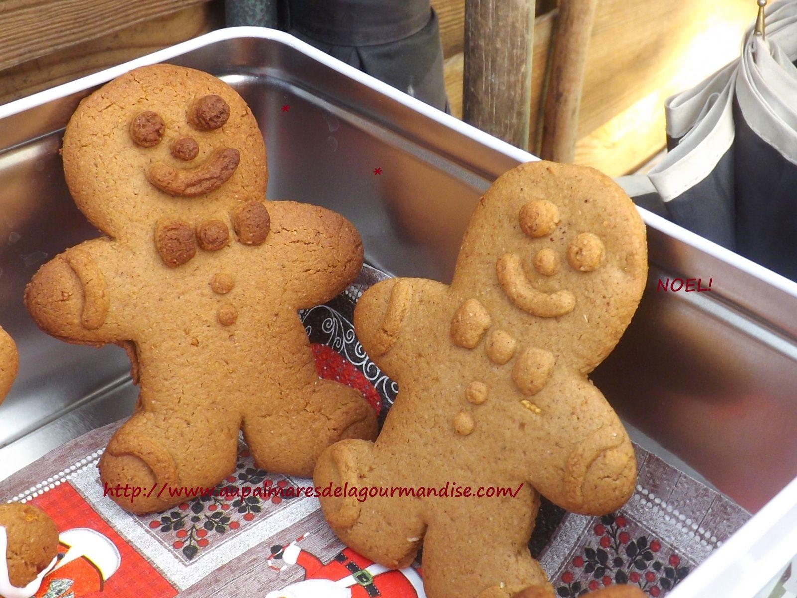 Ne sont ils pas  croquer ces savoureux petits bonhommes en pain d épices Moi je les adore gingerbread christmas cookies ou bonhommes en pain d épices de
