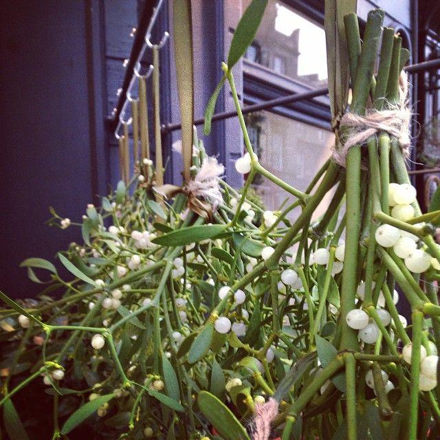Mistletoe / christmas / flowershop / florist / display / natural