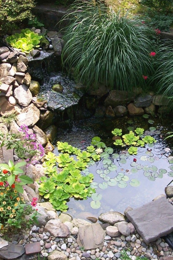 29 Easy DIY Koi Pond Wall plans you can do yourself for ...