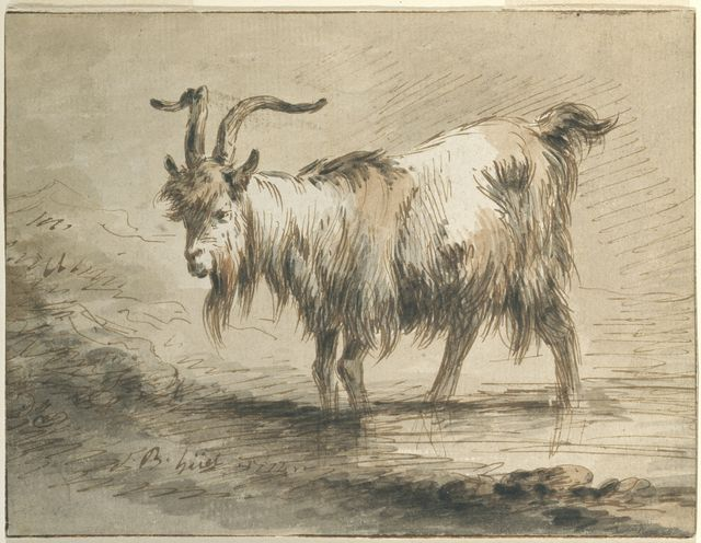 Tombstone Drawing Study Of A Goat 1772 Pen