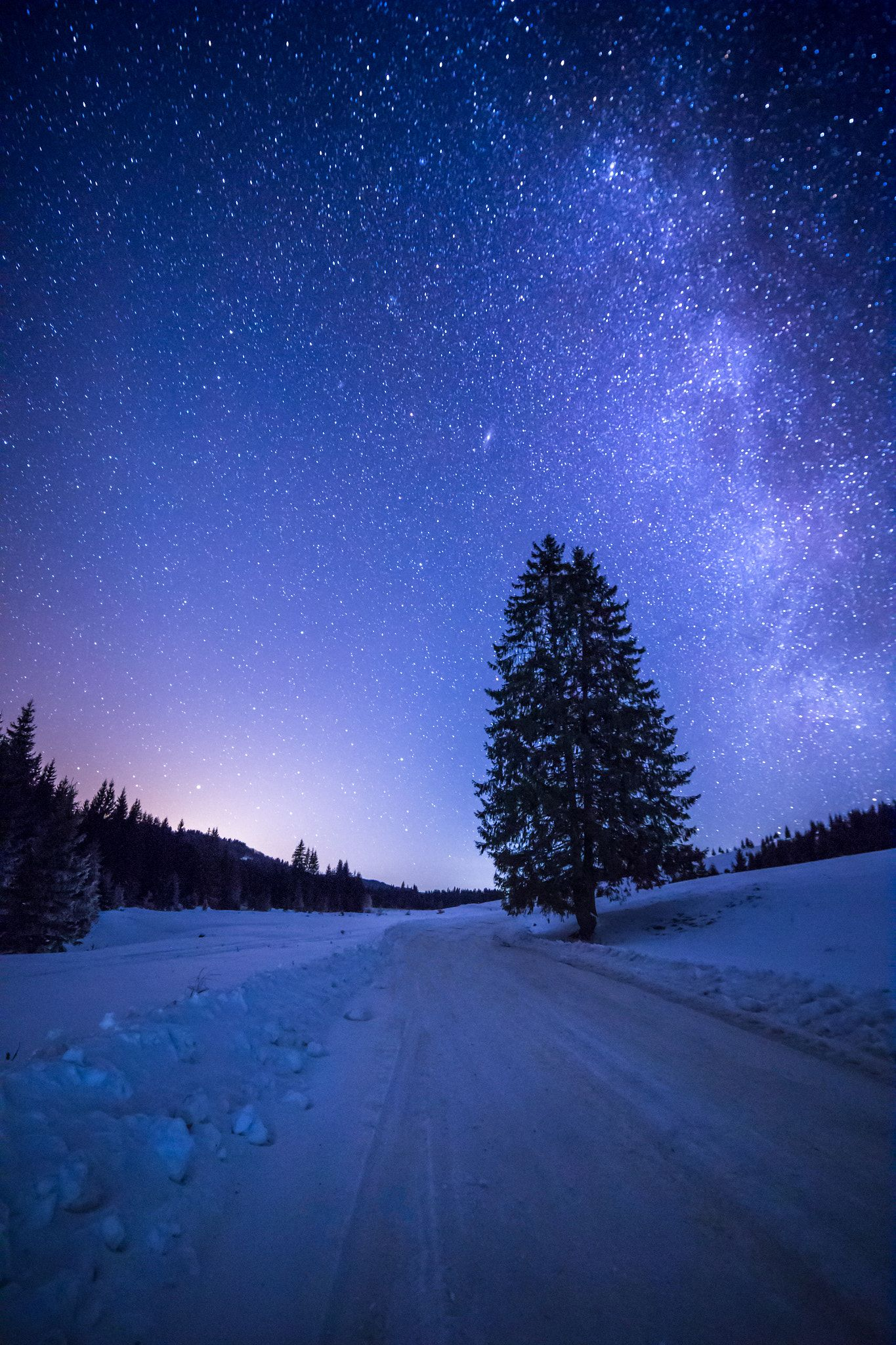 Night Scene In Comandau Romania By Tinu Coman Night Stars Winter Milkyway Road Trees Night Scene Winter Sky Beautiful Photos Of Nature