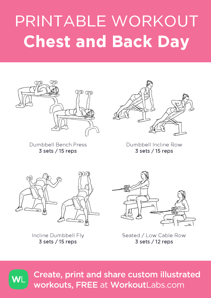 Chest and Back Day my custom printable workout by