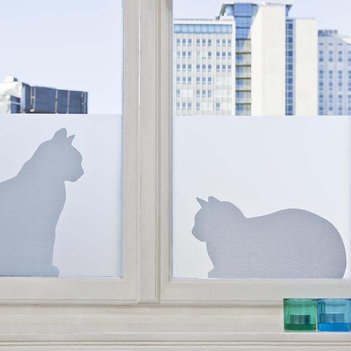 Cats Window Film Siluett Frost
