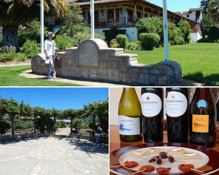 Portugal, Chile e Itália reúne lindas e encantadoras vinícolas prontas para receber um casamento. Descubra as eleitas do Aonde Casar