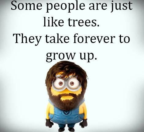 Some people are like trees