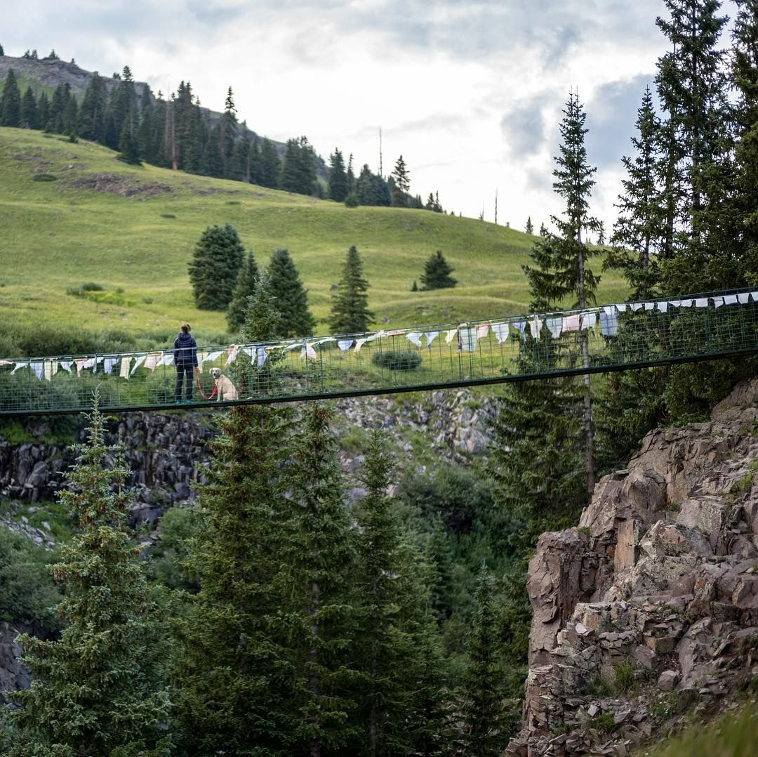 Have You Ever Tried Walking Your Dog Across A Suspension Bridge