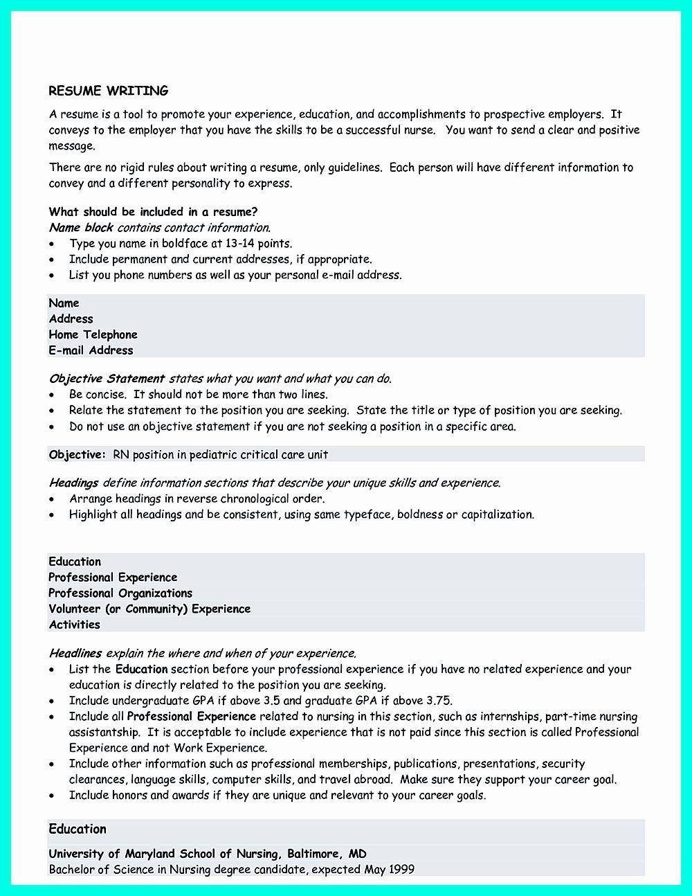 20 Correctional Officer Job Description Resume Resume