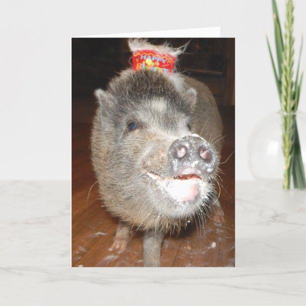 Personalized Happy Birthday Mini Pig Card   Zazzle.com ...