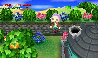 Stone Path Animal Crossing Border