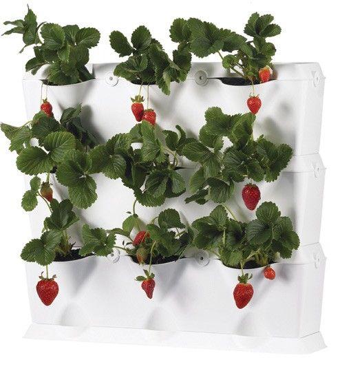 jardineras de plastico huerto urbano vertical en macetas