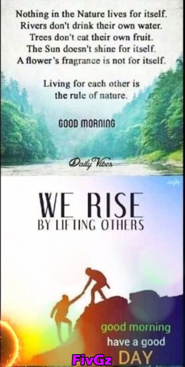 Pin on Good morning beautiful quotes