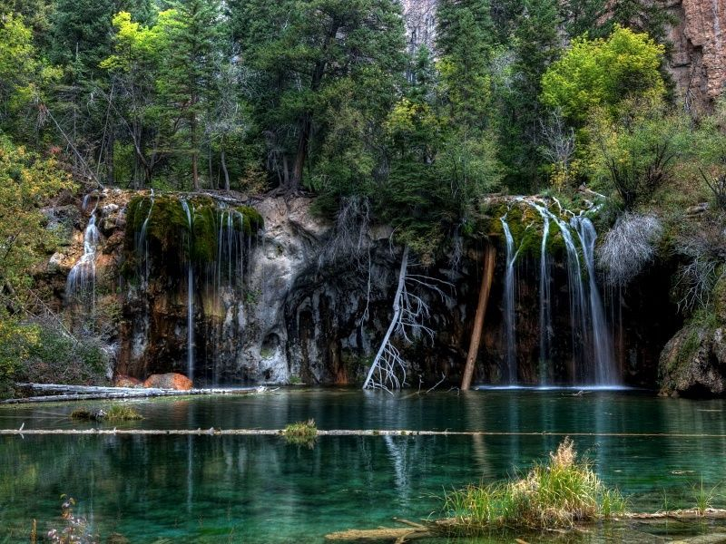 Quiet Forest Waterfall HD Wallpaper on MobDecor Colorado