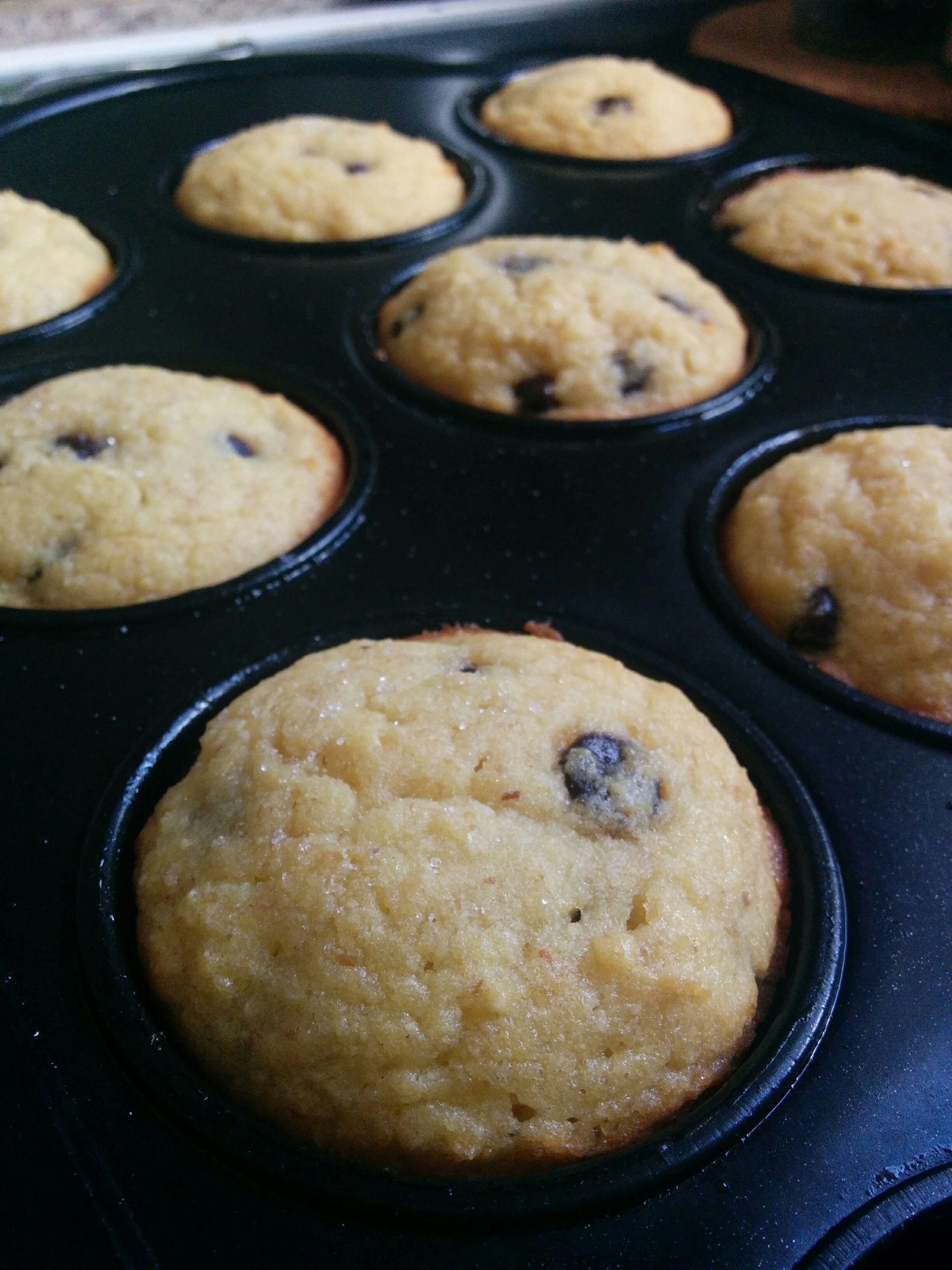 Chocolate chip muffins thm s choc chip muffins low