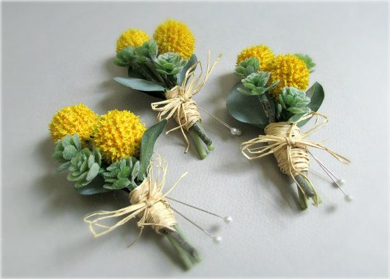 Craspedia Boutonnieres Billy Buttons In Yellow Orange Red Etsy Succulent Bouquet Diy Succulent Boutonniere Succulent Bouquet