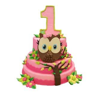 Owl Tiered   Cakes Decorated - Age   Deerfields Bakery