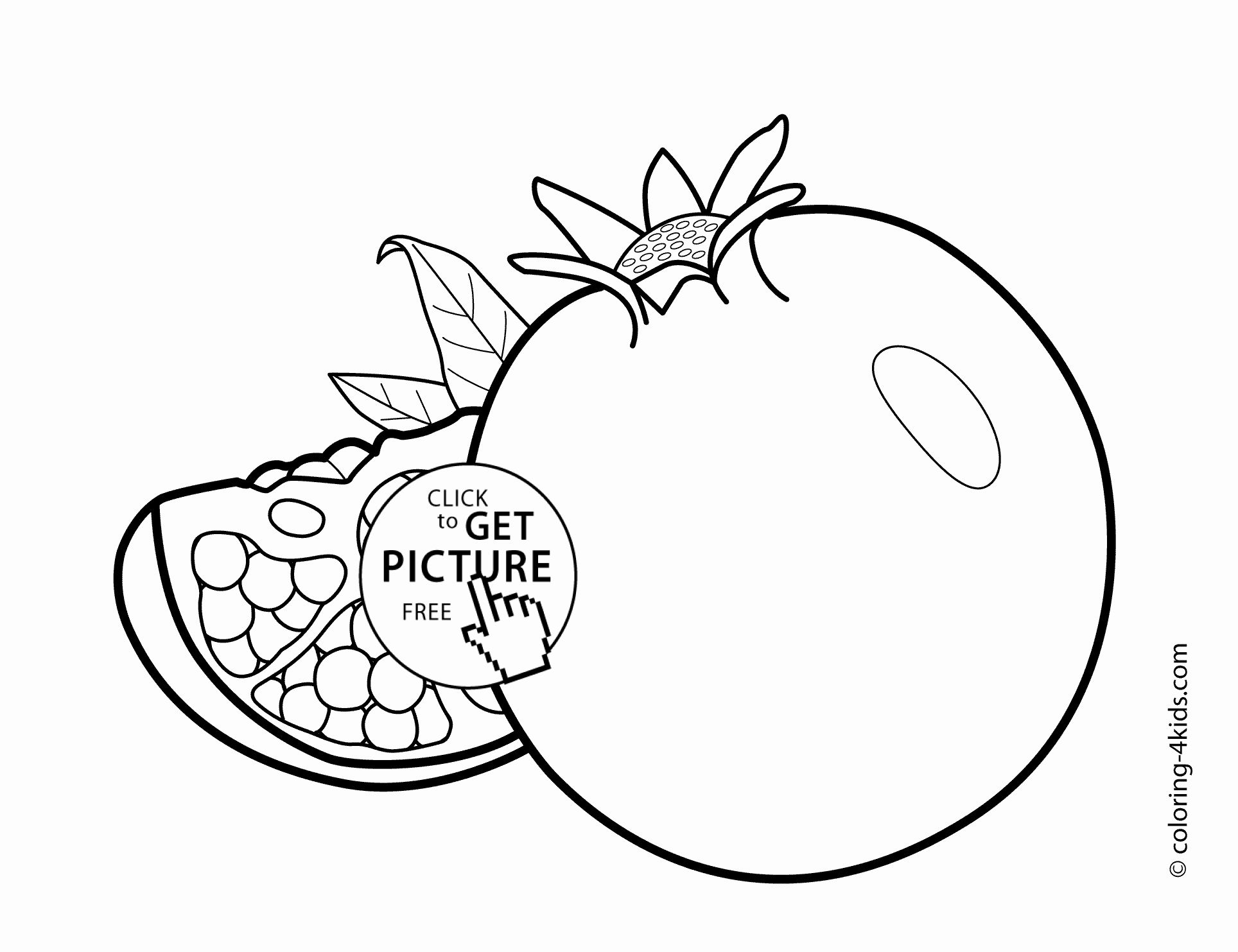 Coloring Pages Of Fruits Elegant Watermelon Worksheet For